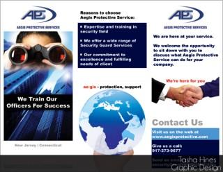 Aegis Protective Service Brochure